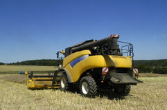 The harvest of colza Stock Photography