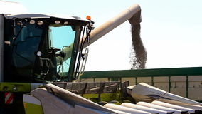 Harvest combine and tractor trailer stock video footage