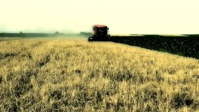 Harvest stock footage