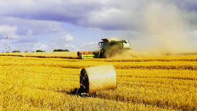 Harvest Stock Image