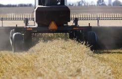 Harvest Combining Saskatchewan Royalty Free Stock Image