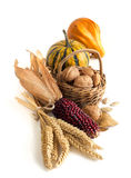 Harvest composition Royalty Free Stock Images