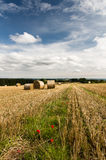 Harvest - Country Scene - North Yorkshire - UK Stock Images