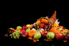 Free Harvest Cornucopia Royalty Free Stock Photo - 11360465