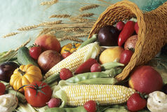 Free Harvest Cornucopia Stock Photo - 6531650