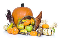 Harvest Cornucopia royalty free stock photo