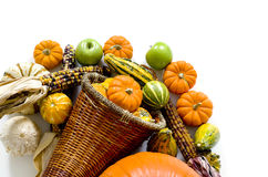 Harvest Cornucopia Royalty Free Stock Photography