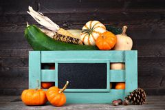 Harvest crate with autumn vegetables against dark wood. Green wooden harvest crate with autumn vegetables and blank chalkboard label against dark wood background Stock Photography