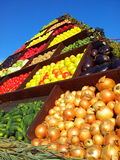 Harvest day vegetables for sale Royalty Free Stock Photo