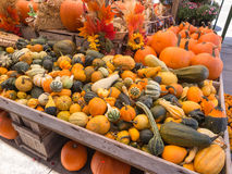 Harvest Decoration Royalty Free Stock Photos