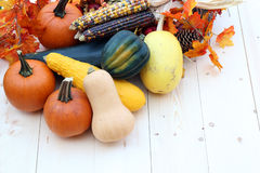Harvest. Decoration for Thanksgiving with pumpkin, squash, corn Stock Images