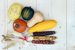 Harvest. Decoration for Thanksgiving with pumpkin, squash, corn Stock Photography