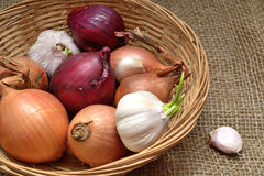Harvest of different varieties of onions Stock Photo