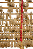 Harvest,ears of rice hang on wood frame Stock Image