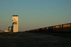 Harvest Elevator and Rail Cars Stock Images