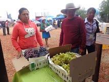 Harvest Fair Stock Image