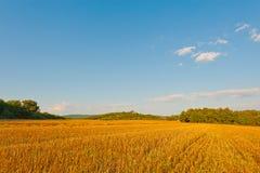 After Harvest Stock Images