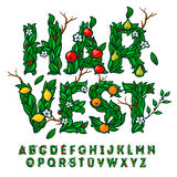 Harvest festival alphabet made with leaves and fruits vector illustration