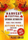 Harvest festival of autumn season poster template. Autumn leaf, rowanberry fruit branch, yellow and orange foliage of maple and chestnut tree banner for Fall Stock Images