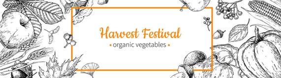 Harvest festival banner. Hand drawn vintage vector frame with vegetables, fruits, leaves. Farm Market Stock Illustration
