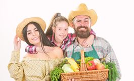 Harvest festival concept. Family farmers gardeners vegetables harvest isolated white background. Family rustic farmers stock photo