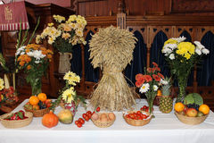 Harvest festival display with sheaf of corn Royalty Free Stock Image