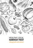 Harvest festival. Hand drawn vintage vector frame illustration with vegetables, fruits, leaves. Farm Market poster Royalty Free Illustration