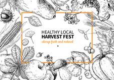 Harvest festival. Hand drawn vintage vector frame illustration with vegetables, fruits, leaves. Vector Illustration