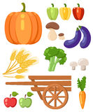 Harvest festival. Harvest fruits and vegetables. Autumn Collection of elements for your design. Stock Image