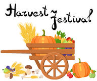 Harvest festival. Harvest fruits and vegetables. Autumn Collection of elements for your design. Royalty Free Stock Photos