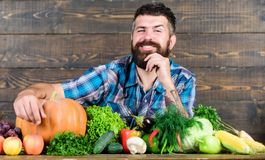 Harvest festival. seasonal vitamin food. Useful fruit and vegetable. man chef with rich autumn crop. organic and natural royalty free stock photos