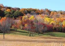 Harvest Field Royalty Free Stock Photo