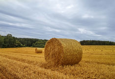 Harvest field with straw bales. Stock Photo