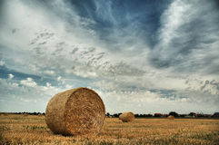 Harvest field with straw bales. Under dramatic sky Royalty Free Stock Images