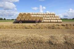 Harvest fields Royalty Free Stock Photo