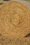 Harvest in the fields. Straw bales collapsed. Royalty Free Stock Photos