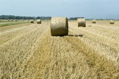 Harvest Fields With Straw In T Royalty Free Stock Photos