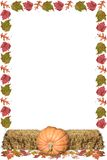 Harvest Frame Royalty Free Stock Photo