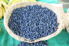 Harvest of fresh acai berries Stock Photos