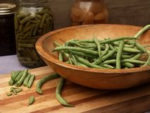 Harvest of fresh green beans. Freshly harvested green beans, some being prepped for canning. Horizontal still life Stock Photos