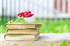 Harvest of Fresh ripe farm raspberry with leaves standing on the old books, on wooden background in white cup, plate. Book on