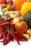 Harvest. Fresh ripe vegetables Stock Photos