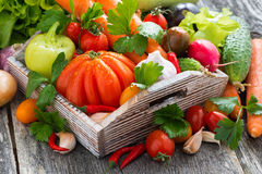 Harvest of fresh seasonal vegetables in a wooden box Royalty Free Stock Photography