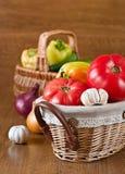 Harvest of fresh vegetables Stock Photos