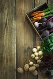 Harvest fresh vegetables from carrot, beetroot, onion, garlic on old wooden board. Top view, rustic style. Copy space. Royalty Free Stock Images