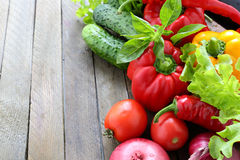 Harvest of fresh vegetables and greens on the boards Stock Photography