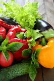 Harvest fresh vegetables and herbs Stock Images