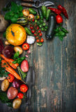 Harvest fresh vegetables on old wooden board royalty free stock photography