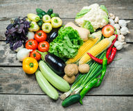 Harvest of fresh vegetables Royalty Free Stock Photography
