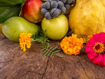 Harvest of grapes quinces pears and apples with autumn flowers Royalty Free Stock Image